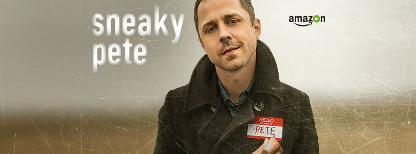 Image result for Direct Download Sneaky Pete Tv Series